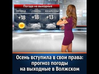 Дождливые выходные придут в Волжский. К концу октя...