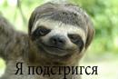 Фотоальбом Артема Кучеренко