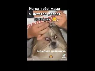 Видео от Марии Ширяевой