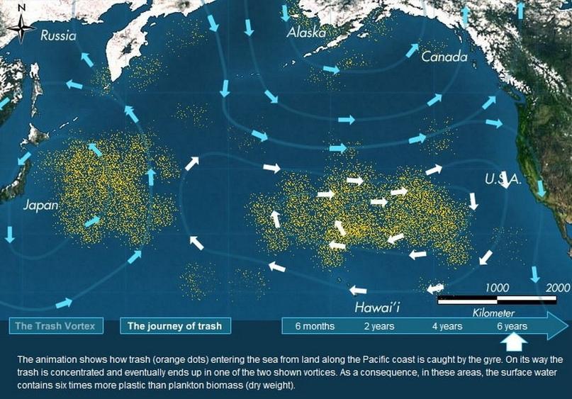 Большое тихоокеанское мусорное пятно (англ. Eastern Garbage Patch — Восточный му...