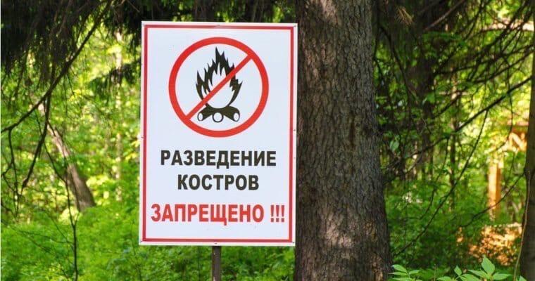 В Удмуртии сняли запрет на посещение лесов.