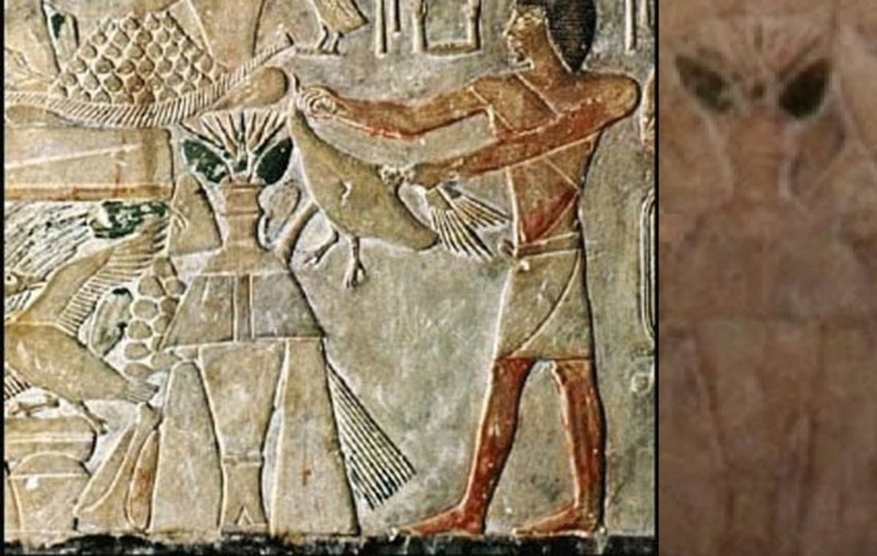 Интеллектуальное смирение перед лицом неопознанного: Чему теология может научиться у возрождения уфологии, изображение №7