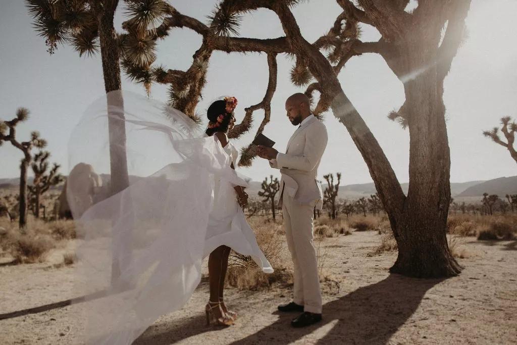 ZmSdNnebJYI - Найти свадебного ведущего оказалось проще простого