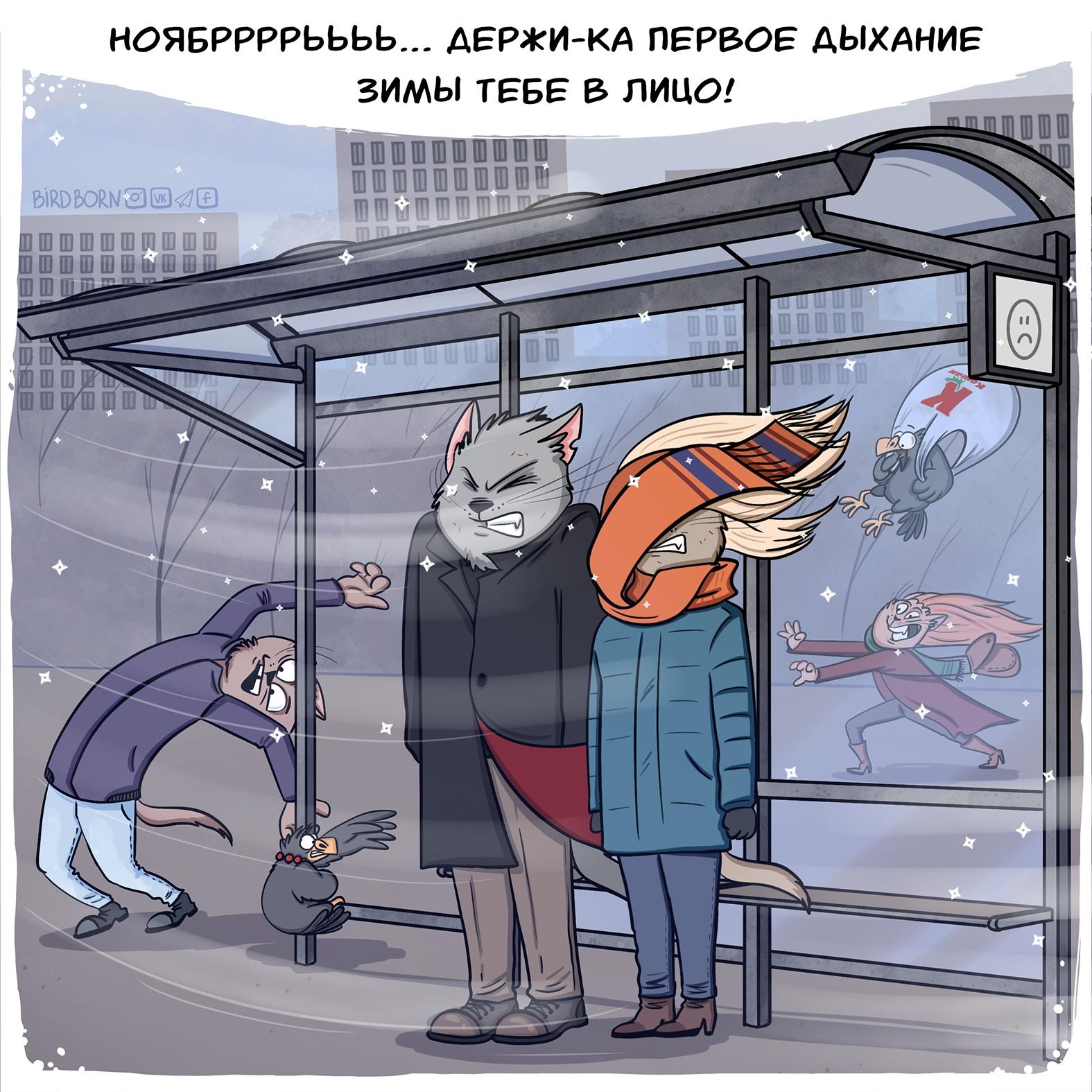bird born ноябрь комикс коты