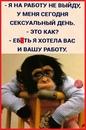 Фотоальбом Мишы Сорокина