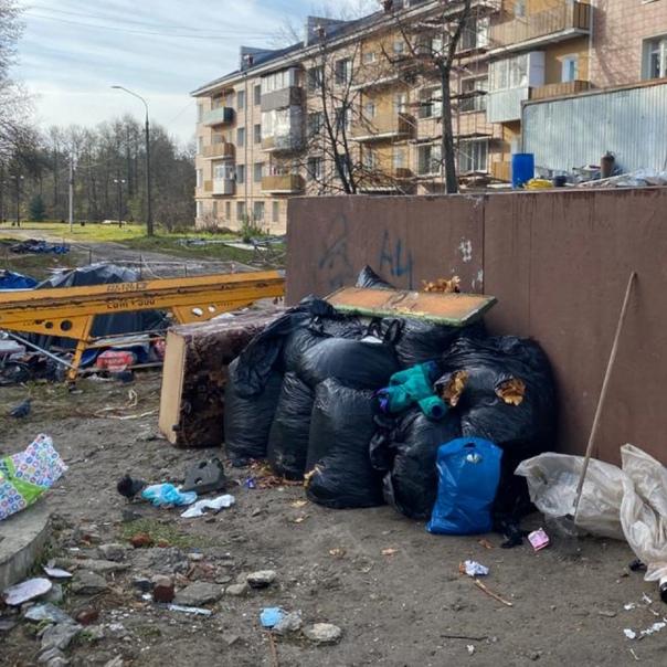 А что с мусором у нас? почему не убирают?...