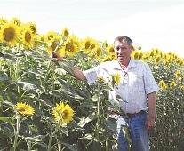 Вышел в поле агроном. 11 октября – День работника сельского хозяйства и перерабатывающей промышленности