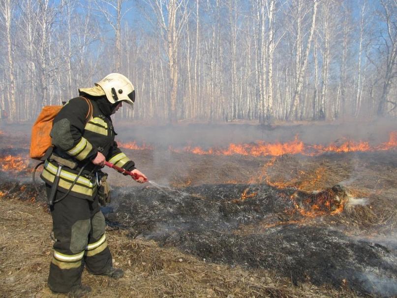 В лесах Тюменской области с начала пожароопасного сезона зарегистрирован 21 пожа...