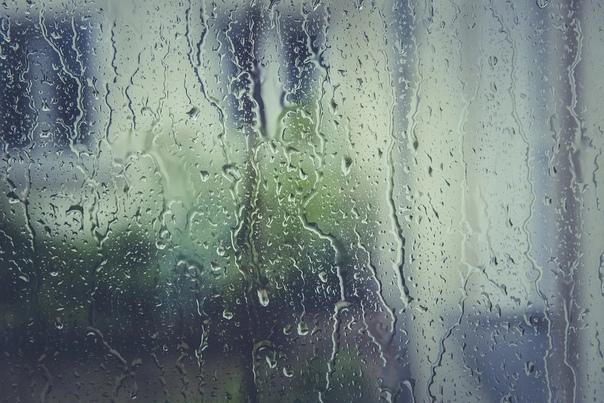 В выходные в Марий Эл обещают дожди По прогнозам с...