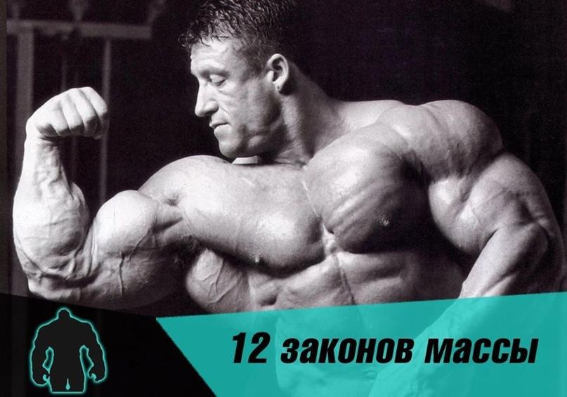 12 ЗАΚОΗОΒ ΜАССЫ