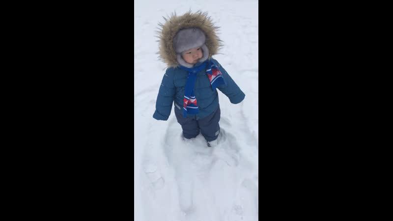 Батый зима 2019