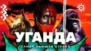 Уганда: дикие животные, ведьмы и море самогона | Настоящая Африка