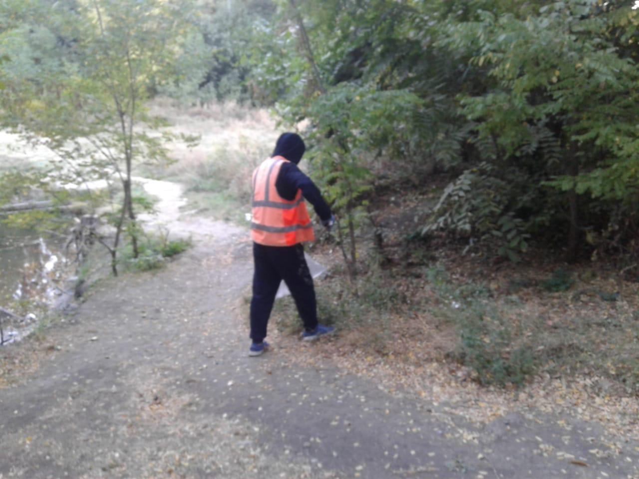 МКУ «Благоустройство»: В роще «Дубки» выполняется уборка мусора и подметаний территорий
