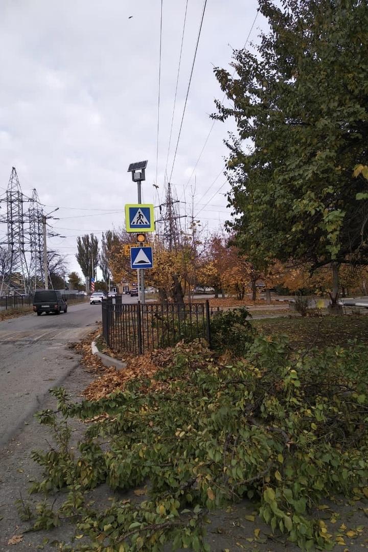 МКУ «Благоустройство»: продолжены работы по обрезке веток деревьев вдоль дорог
