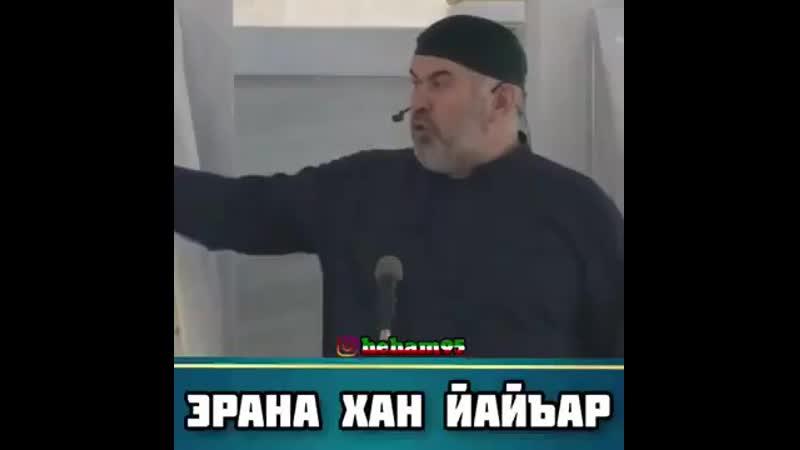 Хаза хьехам нохчийн маттахь АСВАД ХАРЕХАНОВ mp4