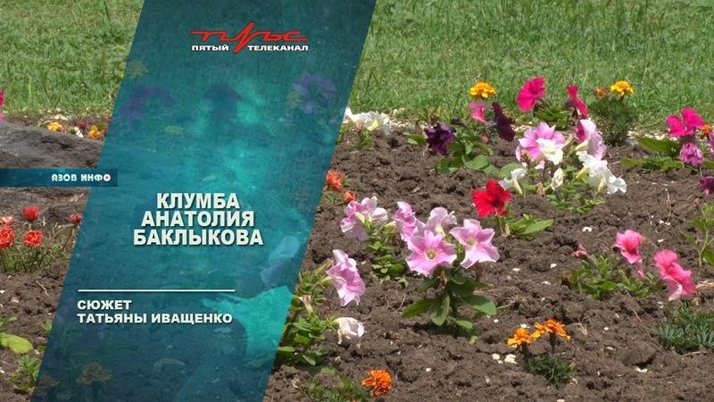 Клумба Анатолия Баклыкова