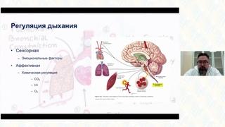 Медикаментозное лечение одышки.  Ларин Е. С.