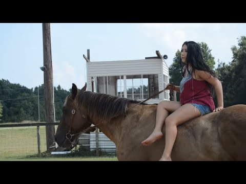 How to stand up on a horse ponyboy
