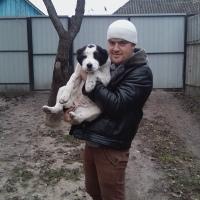 Фотография страницы Михаила Миколайчука ВКонтакте
