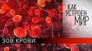 Зов крови. Как устроен мир с Тимофеем Баженовым 10.02.20.