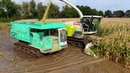 Maize harvest in extreme wet soil conditions Claas Jaguar 940 Kato track dumpers GM Damsteegt