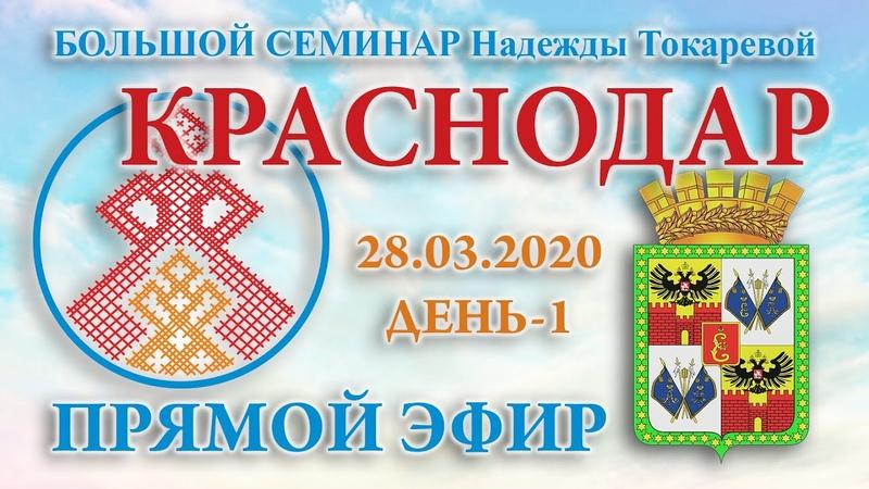 Надежда Токарева 28 03 2020 Д 1 Большой семинар Краснодар Прямой Эфир