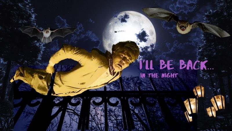 Ночные Заборы в костюме с Алексеем Щербаковым Опасности летучие мыши сычи ядовитый орёл и