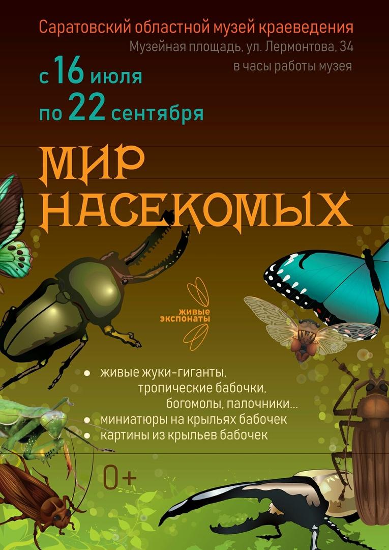 """Афиша Саратов Выставка """"Мир насекомых"""" в Саратове!"""