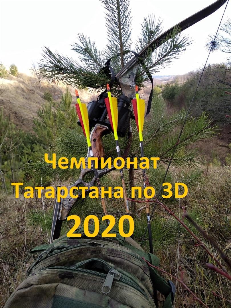 Афиша Казань Чемпионат Республики Татарстан по 3D стрельбе из