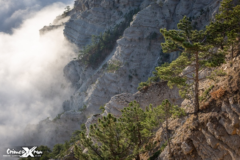 Гонка CXR 2019, Trail, 33 км 2100 d+, изображение №5