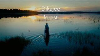 Dikajee - Forest (from Forget~Me~Nots)