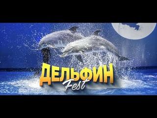 Дельфин Fest в океанариуме Екатеринбурга