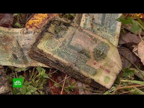 В Костромской области бьют тревогу из за опасного захоронения банкнот