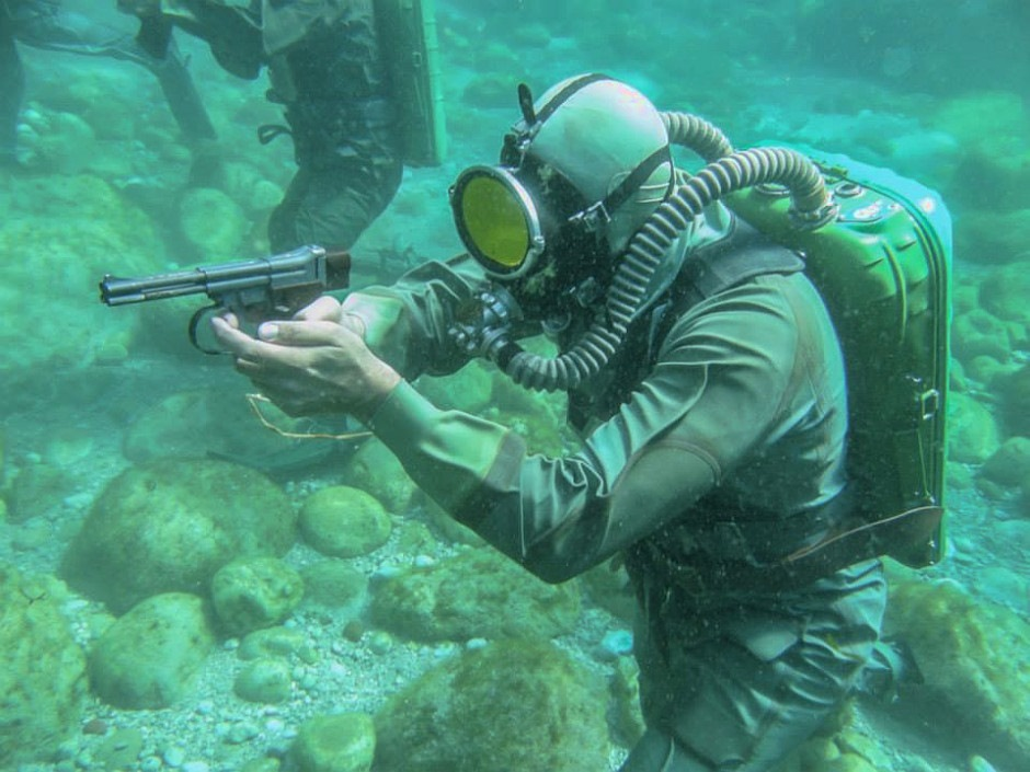 поздравляют друзья фото подводного бойца картинка тюльпаны